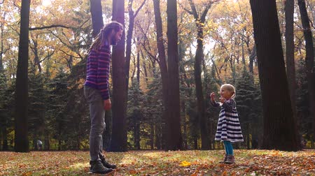 raszta : Dad and daughter are playing in the autumn forest. Dad catches the baby. Stock mozgókép