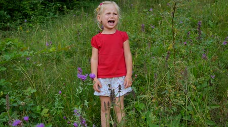 шмель : little four year old girl crying in high meadow grass.