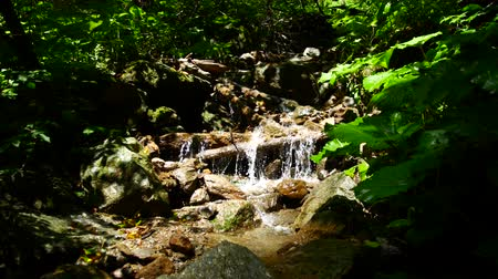ambientalmente : Mountain river with a small waterfall. Environmentally friendly nature