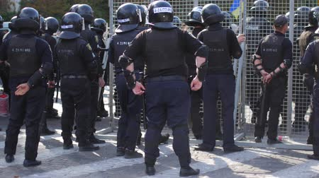 formations : Special police units for protection at demonstrations and rallies.