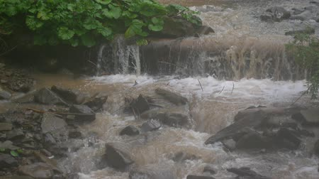torrential rain : Dirty water in a mountain river after rain.
