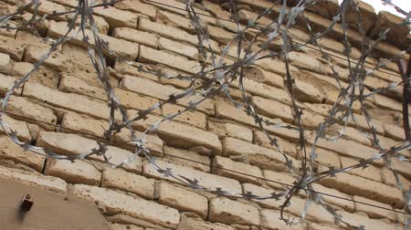 bariéra : Barbed wire on a brick wall.