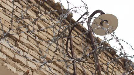 farpado : Barbed wire on a brick wall.