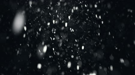 queda de neve : Falling snowflakes during snowstorm, black background Vídeos