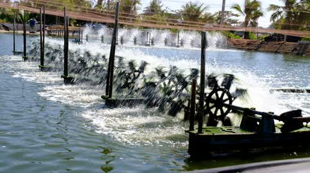 Water treatment. Surface aerator to enrich the pond with oxygen, motor with propeller for aeration of the reservoir.
