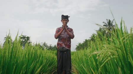 sklízet : Portrait of a farmer in the field, hands in namaste gesture