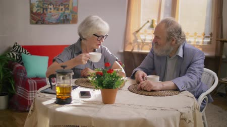 listener : Elderly couple a man and a woman nicely chatting in their cozy dining room Stock Footage