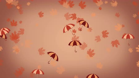 parasol : Autumn background with umbrellas and falling leaves Wideo