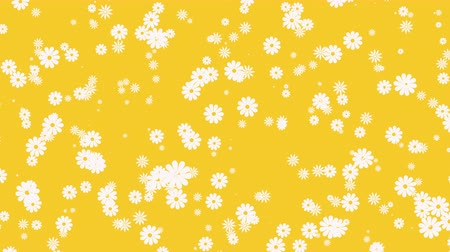camomilla : Abstract yellow motion background with flowers