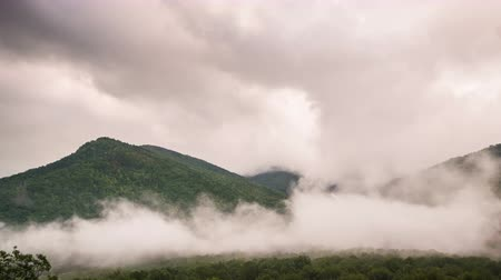 smokey : Smoky Mountain Surrounded by Clouds and Fog Time Lapse