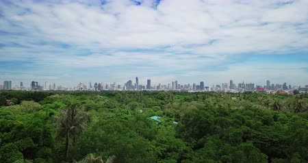 samut : High angle View of Bangkok skyline and view of Chao Phraya River View from green zone in Bang Krachao, Phra Pradaeng, Samut Prakan Province. Harbors and large cargo ships of Bangkok Stock Footage