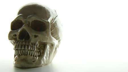 grim : The skull on glow light background camera movement.