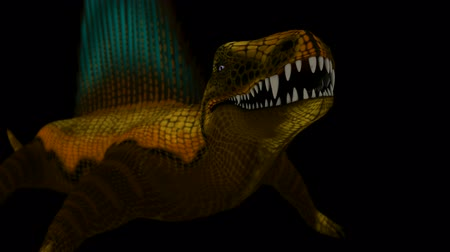 jura : Seamless Looping Dimetrodon Animation 3. Isolated on black, with alpha channel