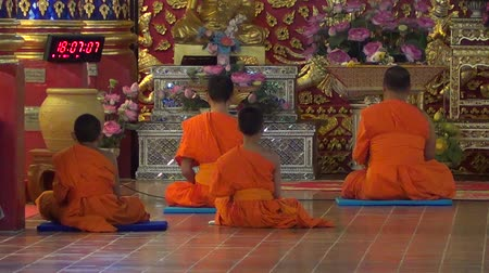 szerzetes : Monks in suandok temple, chiangmai Stock mozgókép