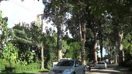garden route : CHIANGMAI , THAILAND - SEPTEMBER 10 2014:  Green Road No.106 Between chiangmai and Lamphun province. Footage at road in Chiangmai, thailand.