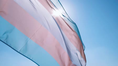 ориентация : closeup of a transgender pride flag waving on the blue sky, moved by the wind, with the sun in the background Стоковые видеозаписи