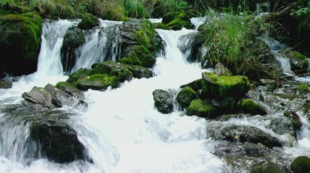 rzeka : Fresh small waterfall in mountain forest