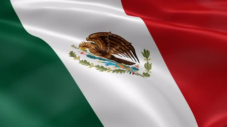 meksika : Mexican flag in the wind. Part of a series.