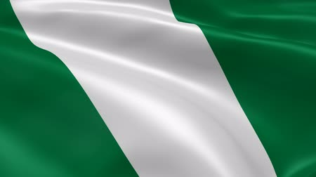 nigeria flag : Nigerian flag in the wind. Part of a series.