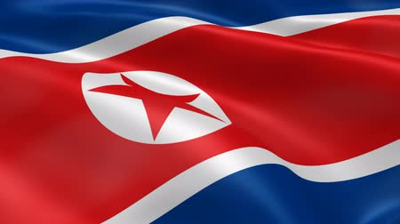 north korean flag : North Korean flag in the wind. Part of a series.