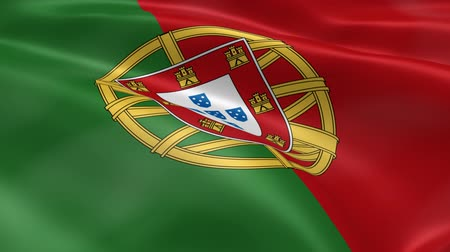 portugalsko : Portuguese flag in the wind. Part of a series.