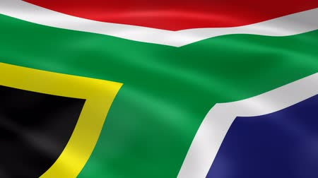 délre : South African flag in the wind. Part of a series.