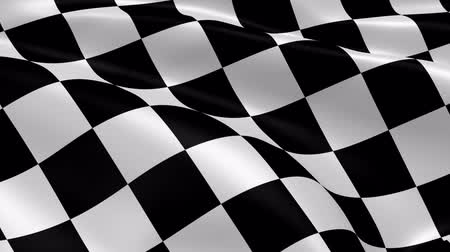 acabamento : Checkered flag in the wind. Part of a series. Stock Footage