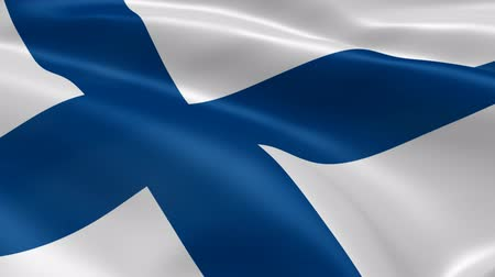 fince : Finnish flag in the wind. Part of a series.
