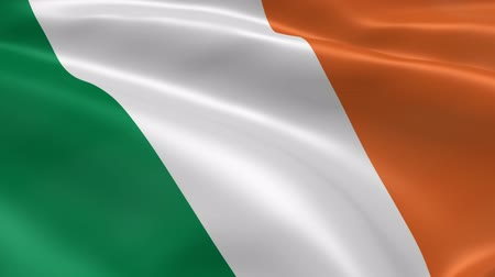 irlandia : Irish flag in the wind. Part of a series. Wideo