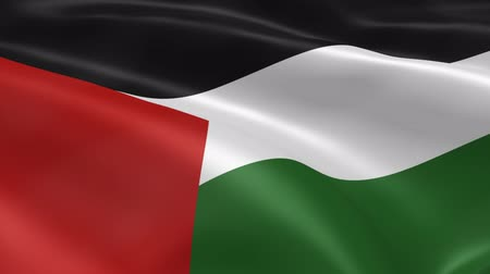filistin : Palestinian flag in the wind. Part of a series.