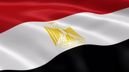 kahire : Egyptian flag waving in the wind. Part of a series.