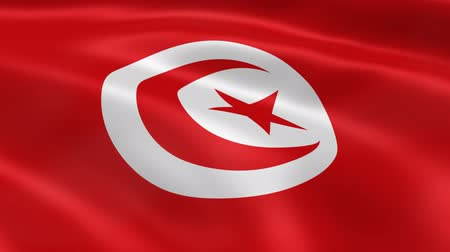 tunezja : Tunisian flag waving in the wind. Part of a series.
