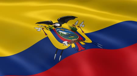 quito : Ecuadorian flag in the wind. Part of a series.