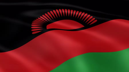 malawi : Malawian flag in the wind. Part of a series. Stock Footage