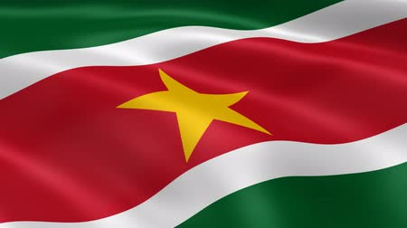 paramaribo : Surinamese flag in the wind. Part of a series. Stock Footage
