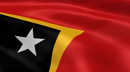 east timor : East Timorese flag in the wind. Part of a series.