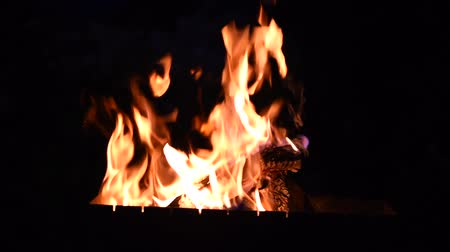 combustão : burning logs in the fire at night