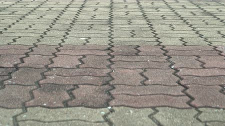 paving blocks : Texture floor street with motion 4k background.
