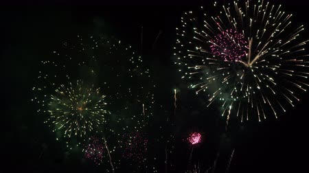 Many flashing colourful fireworks in event amazing with black background celebrate New Year, holiday and festival in night. Stok Video