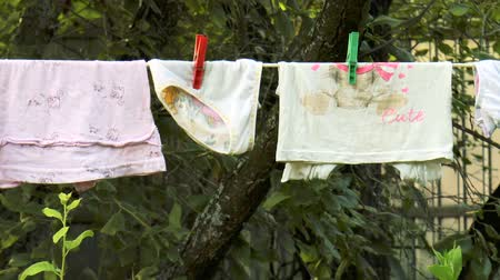 varal : BOGORODSK, RUSSIA - JULY 29, 2017: video shows Wet laundry dry on the garden Vídeos