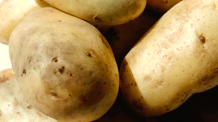 unpeeled : Video shows pile of potatoes rotating close-up