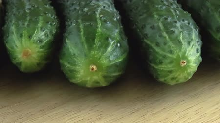 Fresh green cucumber. Food background. Close up rotation Wideo