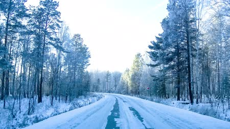 snowy background : Way road through winter forest. Timelapse footage