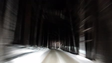 Way road through winter forest. Timelapse footage