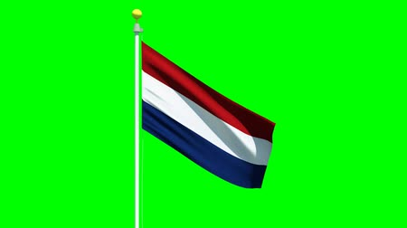 cobalt : Flag of the Netherlands waving in the wind on a green screen.