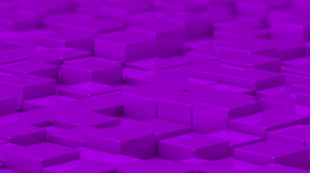 bobbing : Purple cubes moving up and down in a random pattern. 3D animated motion background loop.