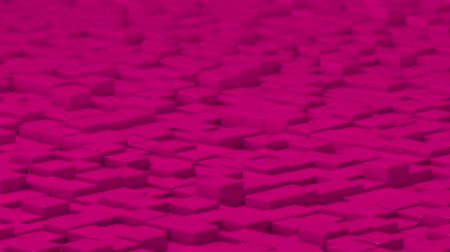 uklidňující : Pink cubes moving up and down in a random pattern. 3D animated motion background loop.