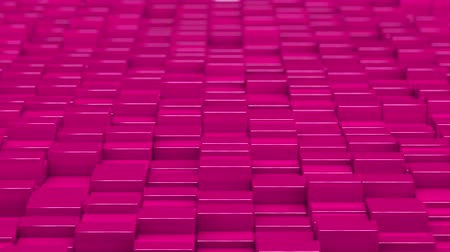 bobbing : Pink cubes moving up and down in a random pattern. 3D animated motion background loop.