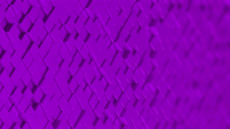 bobbing : Wall of purple cubes moving in a random pattern. 3D animated motion background loop.
