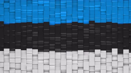 estonya : Estonian flag made of cubes moving up and down in a random pattern. 3D animated motion background loop.